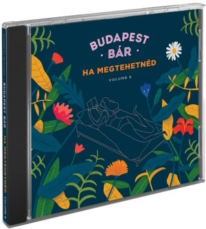 budapest_bar_ha_megtehetned_volume_8_in