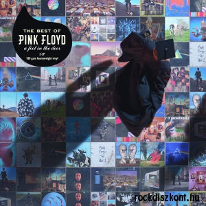 Pink Floyd - The Best Of Pink Floyd: A Foot In The Door (Vinyl) 2LP
