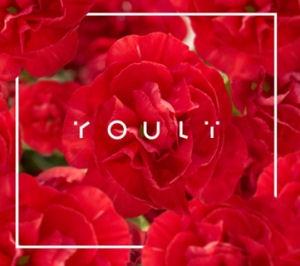 Youli (Horányi Juli) - Youli CD